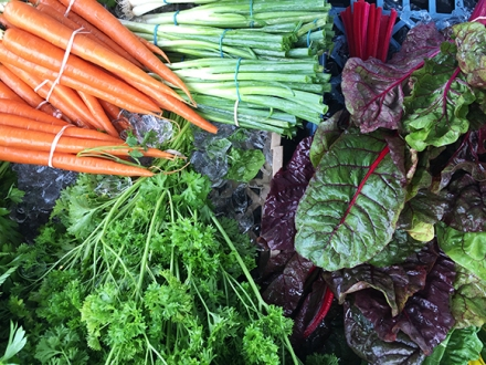 swampscott farmers market
