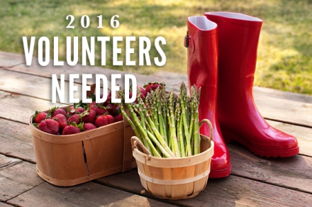 2016VolunteersNeeded